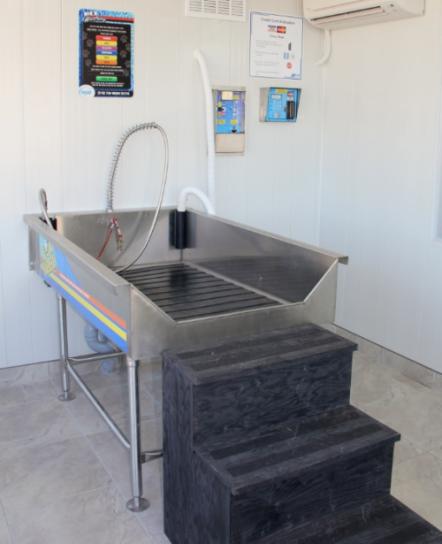 Petwashg pet wash your pet will enjoy the trip to h2go solutioingenieria Choice Image